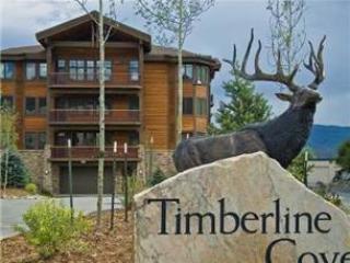 TIMBERLINE COVE #208 - Image 1 - Frisco - rentals