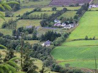 Traditional Irish Cottage - Dungiven vacation rentals