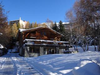 DUPLEX DANS LE CHALET LE CHANTELOUVE - Les Deux-Alpes vacation rentals
