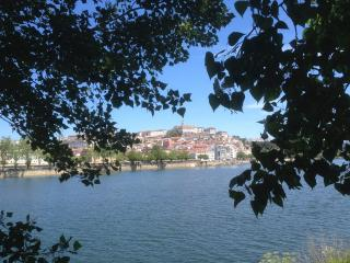 Almedina Apartment - Coimbra vacation rentals