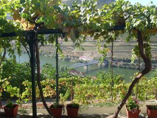 Quinta da Galeira - Pinhao vacation rentals