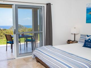 New, Modern, Luxury Rental, Seas the Day Villa - Saint John vacation rentals