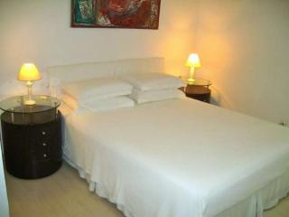 Nice, Modern Studio Apartment on Famous Street in Ipanema Close to Ipanema Beach - Ipanema vacation rentals