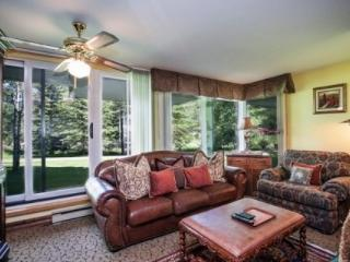 SUMMER DISCOUNTS~BOOK NOW! Great Vail Location~On bus route to Vail Village~Hot Tub and Indoor Pool! - Vail vacation rentals