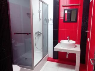 spacious 2 bedroom apartment in the centre - Tbilisi vacation rentals
