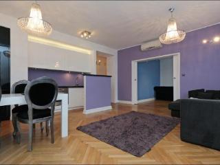 Beautiful sunny apartment  Tamka 2 - Warsaw vacation rentals