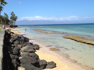 MAUI SANDS GETAWAY OCEANFRONT - Lahaina vacation rentals