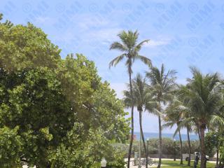 Exquisite 2 Bedroom Oceanfront Suite on Ocean Dr. - Miami Beach vacation rentals