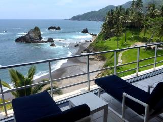 Vida Del Mar 198 - Manzanillo vacation rentals