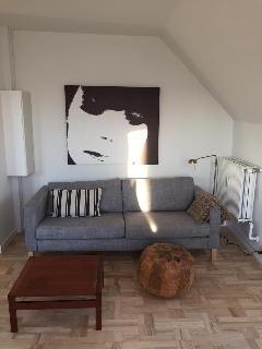 Brand new apt in central Copenhagen - Frederiksberg vacation rentals