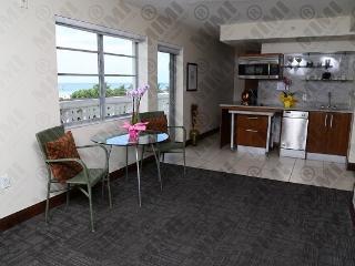 Oceanfront w/Balcony Deluxe Suite on the Top floor - Miami Beach vacation rentals