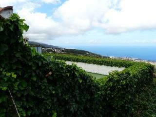 Finca St. Barbara - Apt. 4 - Icod de los Vinos vacation rentals