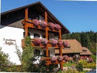 LLAG Luxury Vacation Apartment in Freudenstadt - 538 sqft, quiet location, ideal for daily adventuring… - Freudenstadt vacation rentals