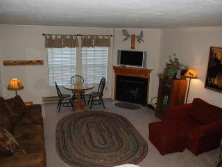 1 BR Vacation Condo at Wolf Creek Resort - Eden vacation rentals