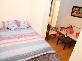 Spacious Room & Private Bathroom in Chapinero - Chia vacation rentals
