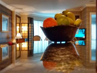 A Great Value, Luxurious 1 Bed Condo in Downtown. - Toronto vacation rentals