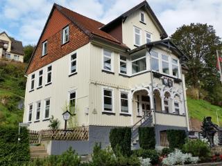 AltesRathaus Doppeltferienwohnung - Wildemann vacation rentals