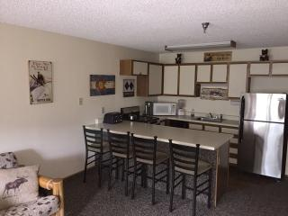 Winter Park CO from $50.00 nt. during Summer! - Winter Park vacation rentals