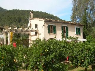 Dream Finca in orange grove - Soller vacation rentals