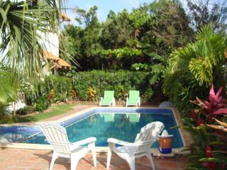 calamar condo 3...  2 BR 2 B ....Puerto Morelos - Puerto Morelos vacation rentals