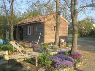 Chalet in Saint-Georges-lès-Baillargeaux, at Eugênia's place - Saint-Georges-les-Baillargeaux vacation rentals