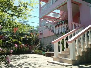 Apartments Bosotina - Kukljica vacation rentals