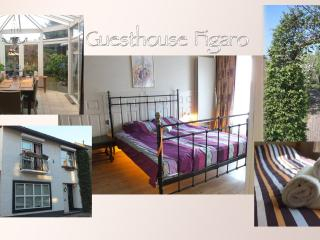 Guesthouse Figaro - Maastricht vacation rentals