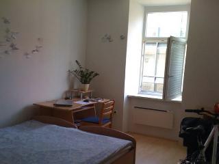 Cozy 2 person room in The Shire - Maribor vacation rentals