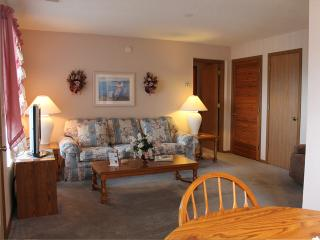 1 Bedroom 1 Bath Patio/Deck Units - 310 - Indian Point vacation rentals