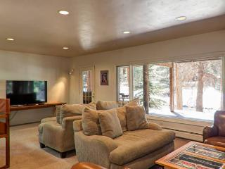 3 Bedroom 2 Bath - Center of Vail, Walk everywhere - Vail vacation rentals