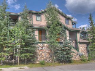 Twin Elk Lodge C10 - Peak 8 - Breckenridge vacation rentals