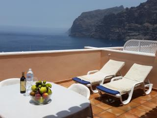 SUPERB APARTMENT WITH SUN TERRACE. 1 - Los Gigantes vacation rentals