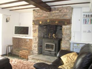 The perfect hideaway forest of dean - Bream vacation rentals