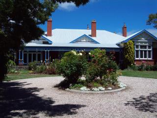 Callac centre of town - Devonport vacation rentals