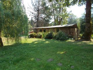 Riverfront Cabin - Deming vacation rentals