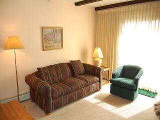 Meadow Ridge Court 3 Unit 7 - Fraser vacation rentals