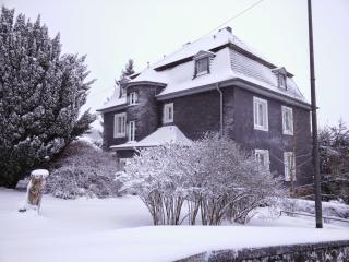 Family home - Gondelsheim vacation rentals