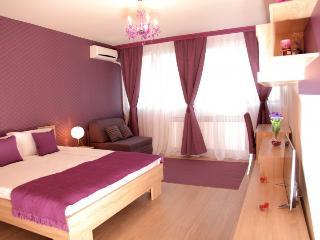 Belgrade Apartments, Apartment Vracar, Crveni Krst - Belgrade vacation rentals