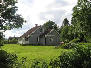Forest, Lakes Golf and Supermarket - Filipstad vacation rentals