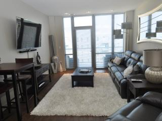 Luxury Condo in the Haymarket Downtown - Lincoln vacation rentals