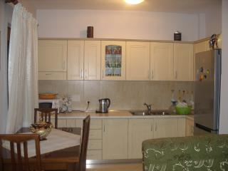 great area big apartment - Tirana vacation rentals