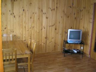 confortable apartment in the mountain near Riaza - Segovia vacation rentals