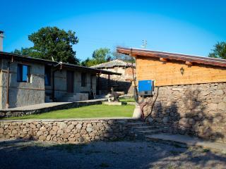 Vila Solar - Mineralni Bani vacation rentals