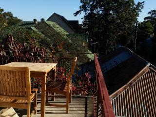 Two Bed apartment with balcony in Balmain - Balmain vacation rentals