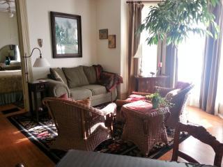 1 Bedroom Suite - Walk to MU $120/night - Columbia vacation rentals