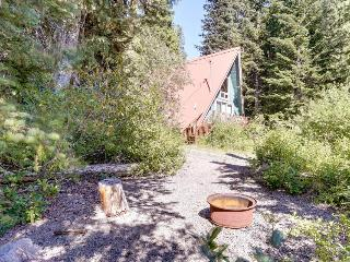 Pet-friendly cabin with room for eight, close ski access! - Government Camp vacation rentals