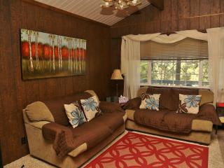 Brown Cabin with a view - Big Bear City vacation rentals