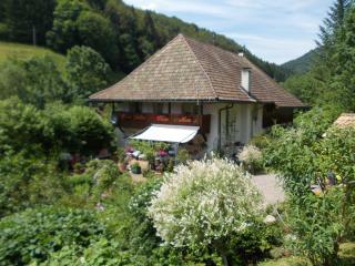 Holiday Cottage Black Forest - Kleines Wiesental vacation rentals