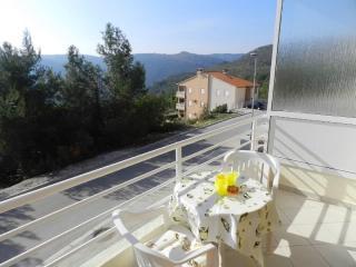 Apartment Rosana 2 - Rabac vacation rentals