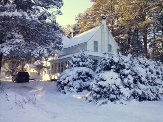 Adirondacks Family Holiday Chalet - Saranac Lake vacation rentals
